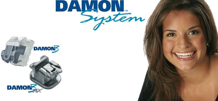 sistem-damon2